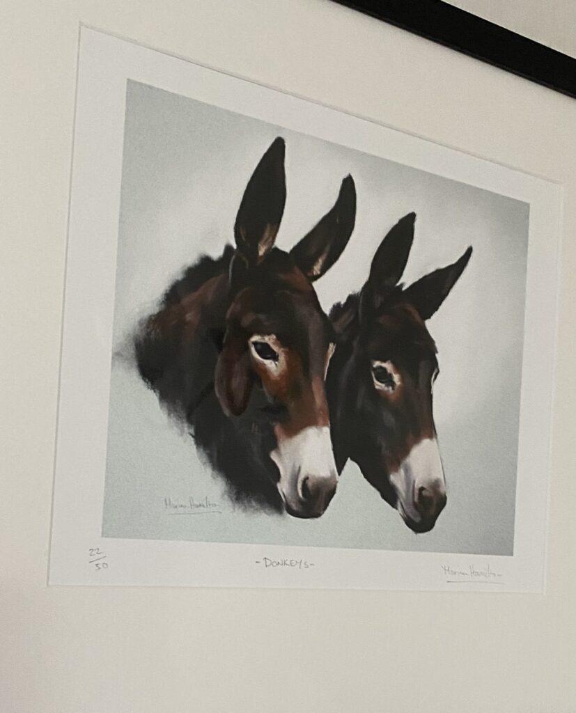 'Hank, the Singing Donkey'